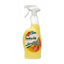 Спрей молочко для чистки кухни Ludwik